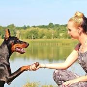 Why Dogs Make Superb Customer Service Employees